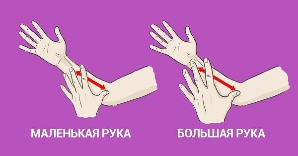знаки зодиака руки имена человек длина способы правда деятельность