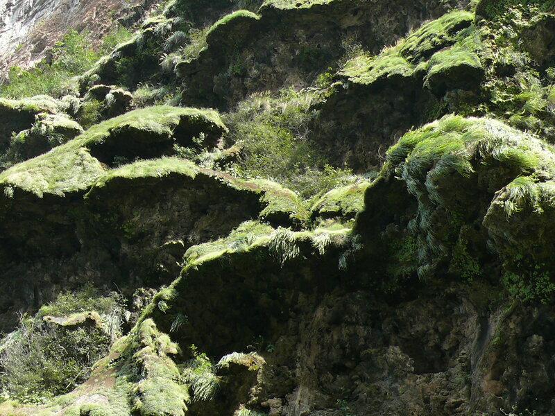 Мексика, каньон дель Сумидеро