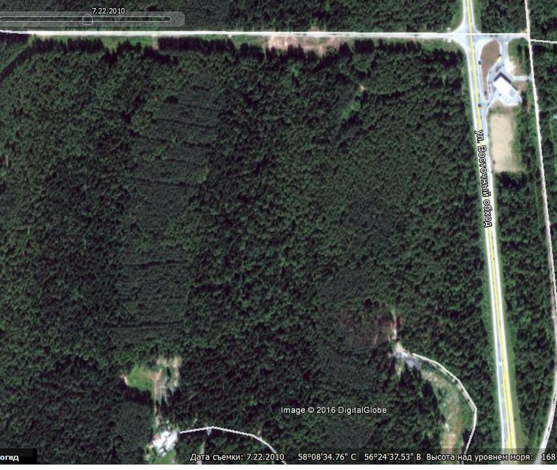 Лес есть.png