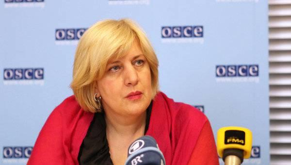 """«Презренный, позорный поступок, это не журналистика"""": В ОБСЕ прокомментировали издевательство Филлипса над пленным украинцем"""