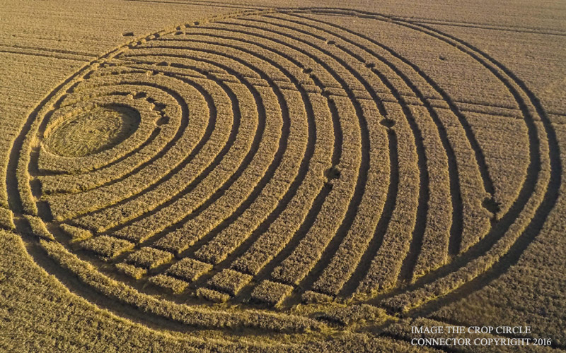 One of the last crop circles in 2016, UK, Woodway Bridge, near All Cannings