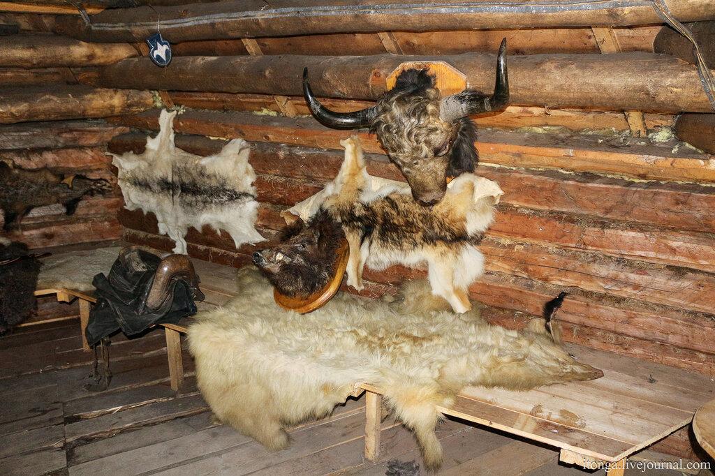 Горный Алтай, Царская охота
