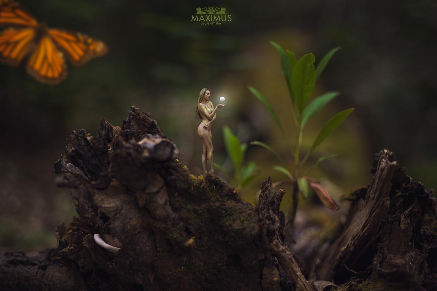Мечтательница - The Day dreamer / Maximus Parker