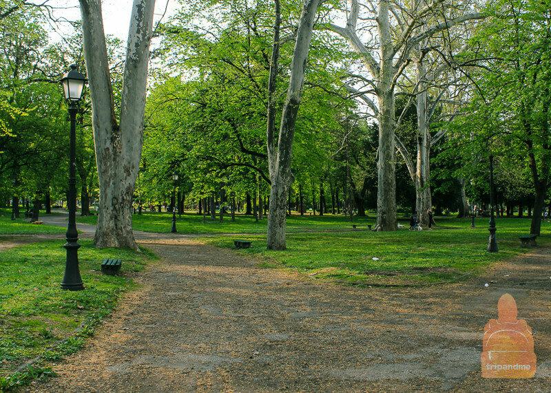 Земунский парк