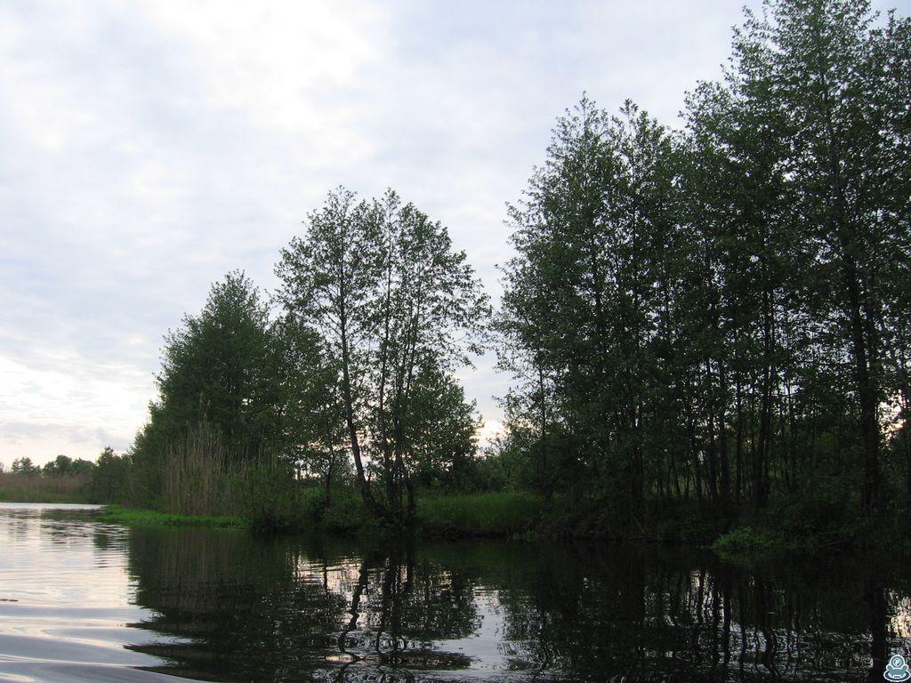 Берег Ворсклы