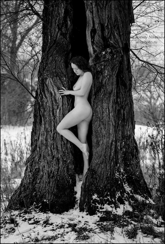 Эротика от Алексея Николаева