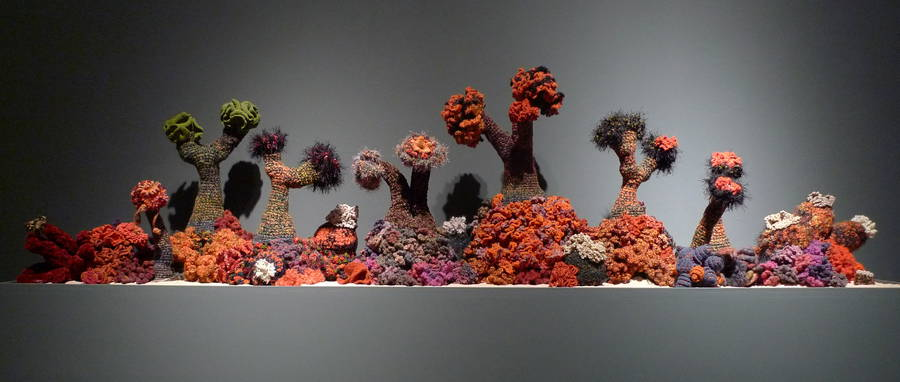 Accurate Crocheted Coral Reefs