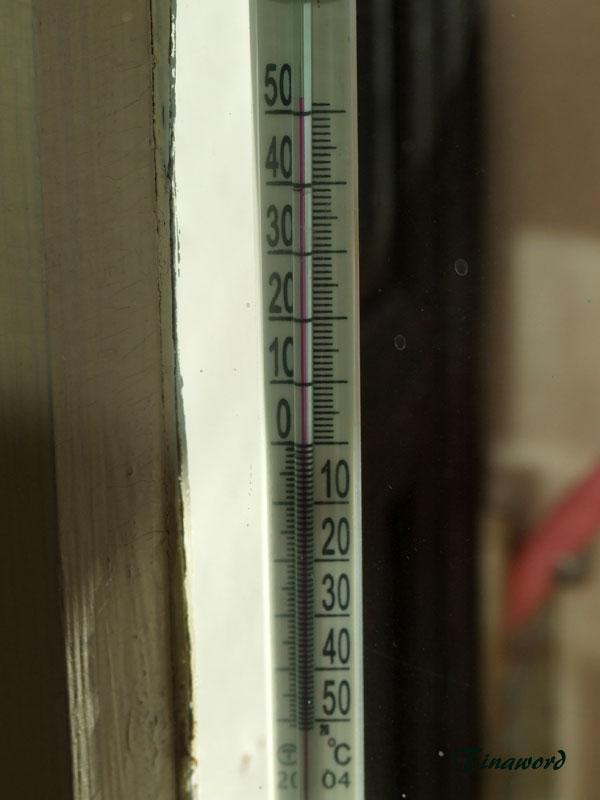 термометр-5.jpg