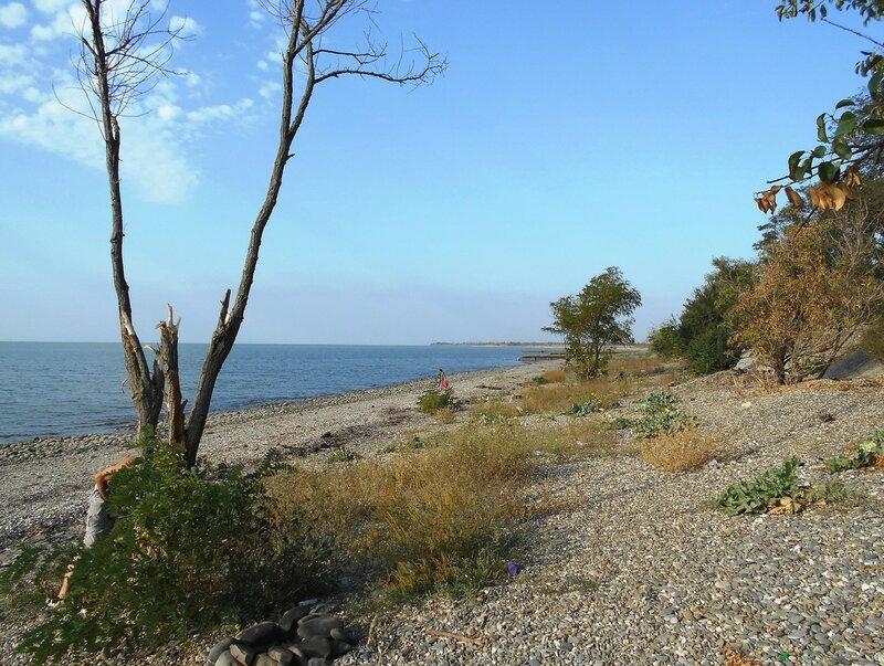 Берег, море ... DSCN1275.JPG