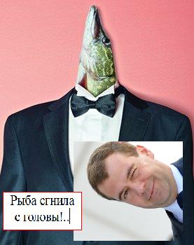 Мой коллаж про Премьер-министра Медведева