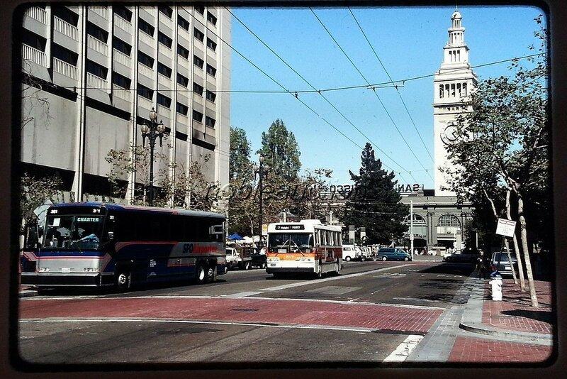 1996 SF.jpg
