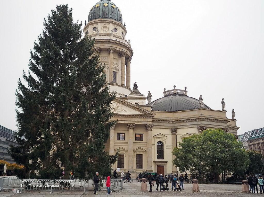 Первая берлинская елка 2016