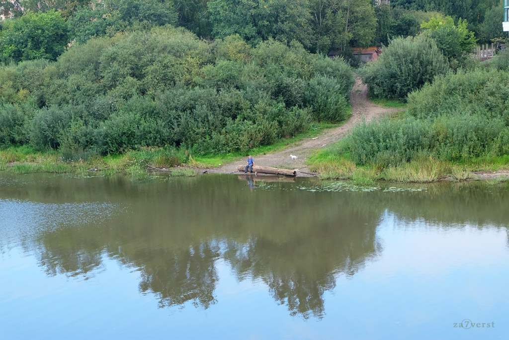 Вологда, рыбак с собачкой