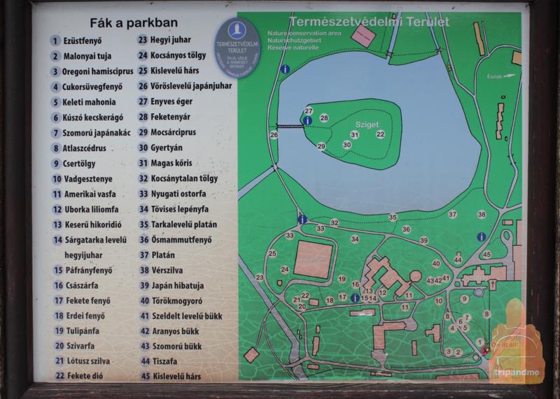 План замка Брунсвик