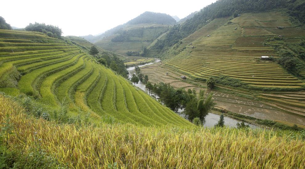 5. Рисовые террасы, расположенные в округе Юаньян в провинции Юньнань, одни из самых больших и живоп