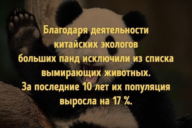 © voanews.com  © iucnredlist.org