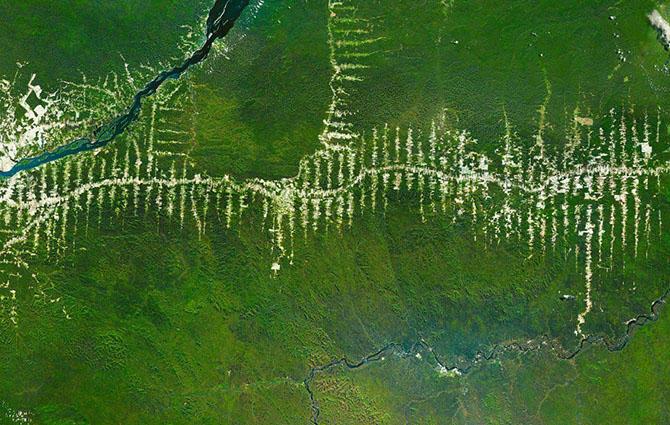 9. Уничтожение и вырубка тропических лесов Амазонки в Бразилии. Из космоса видны «облысения».