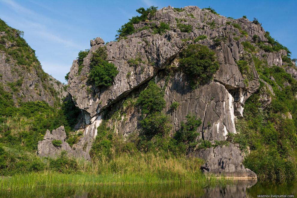 12. На территории заповедника водно-болотных угодий Ван Лонг обитает более 100 видов птиц и около 40