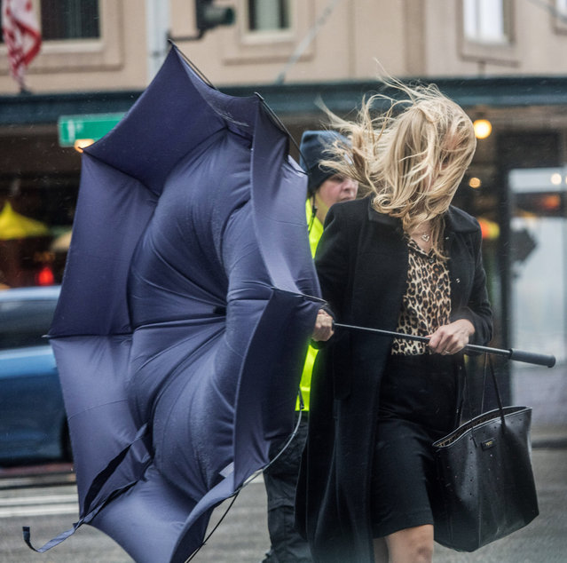 Pedestrians get battered crossing Pine Street on 1st Ave. in downtown Seattle by gusting winds comin