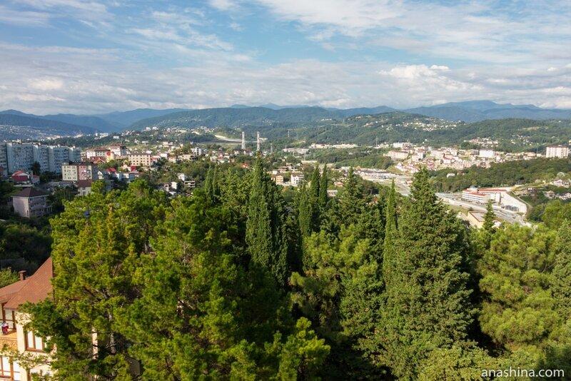 Панорама Сочи, Дендрарий