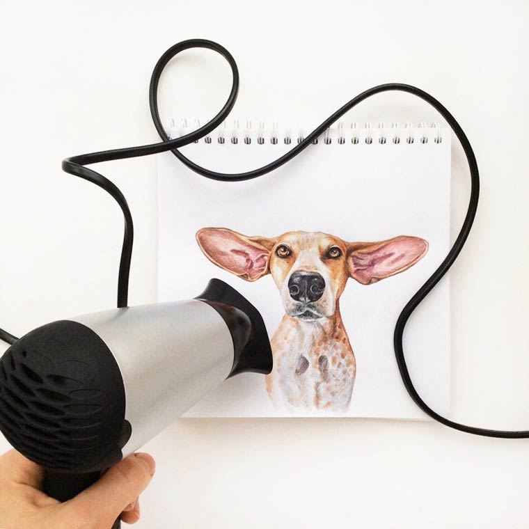 Interactive Dogs - Cute and funny illustrations