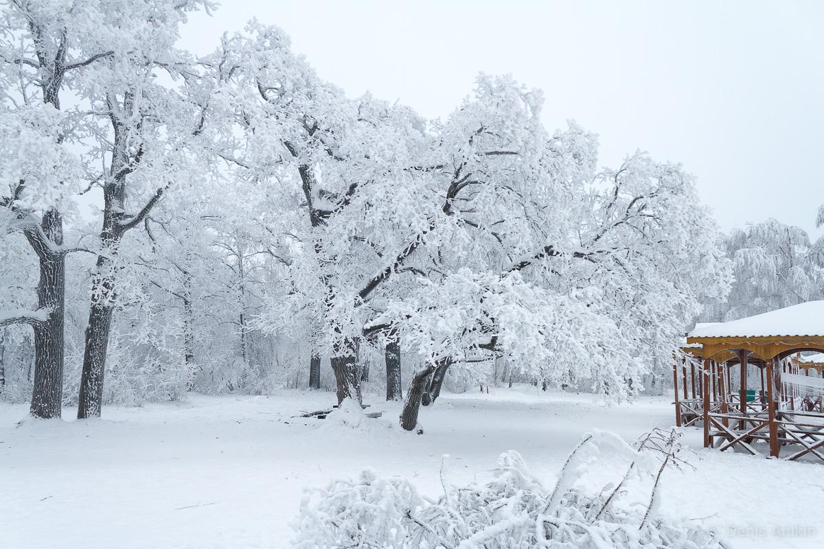 Кумысная поляна зима фото 3
