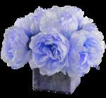 bouquet pivoines 2 Lizzy 01 2016.png