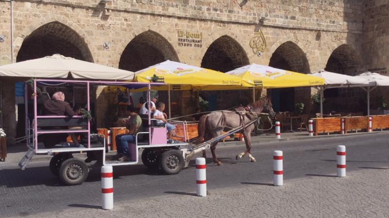 Арабская семья едет в повозке, запряженной лошадью