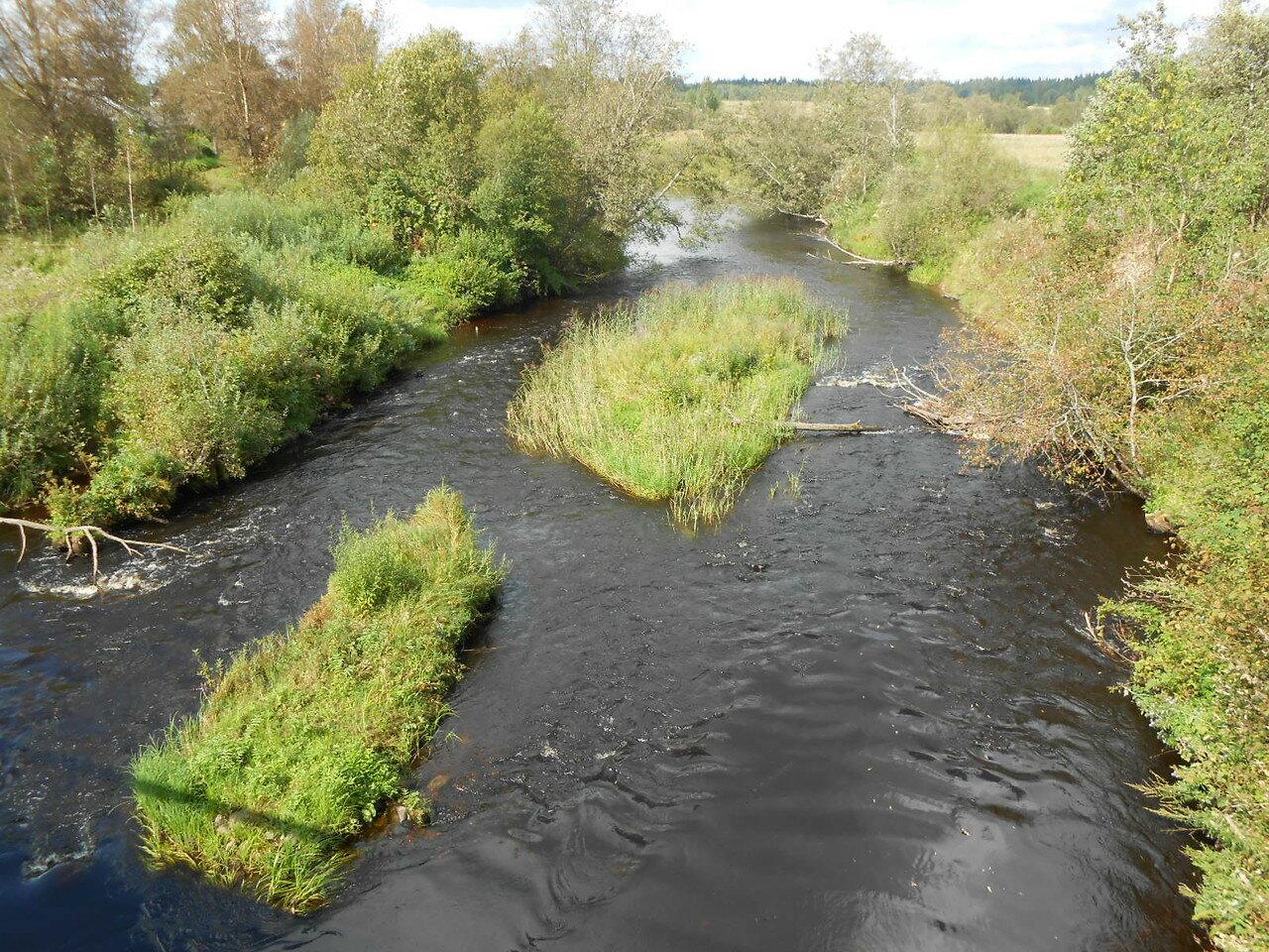 Река Полометь возле села Дворец