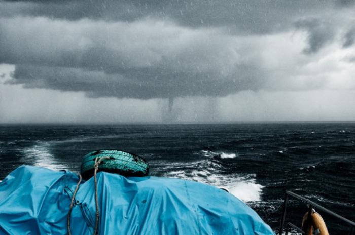 На море во время тайфуна. Генетика в действии