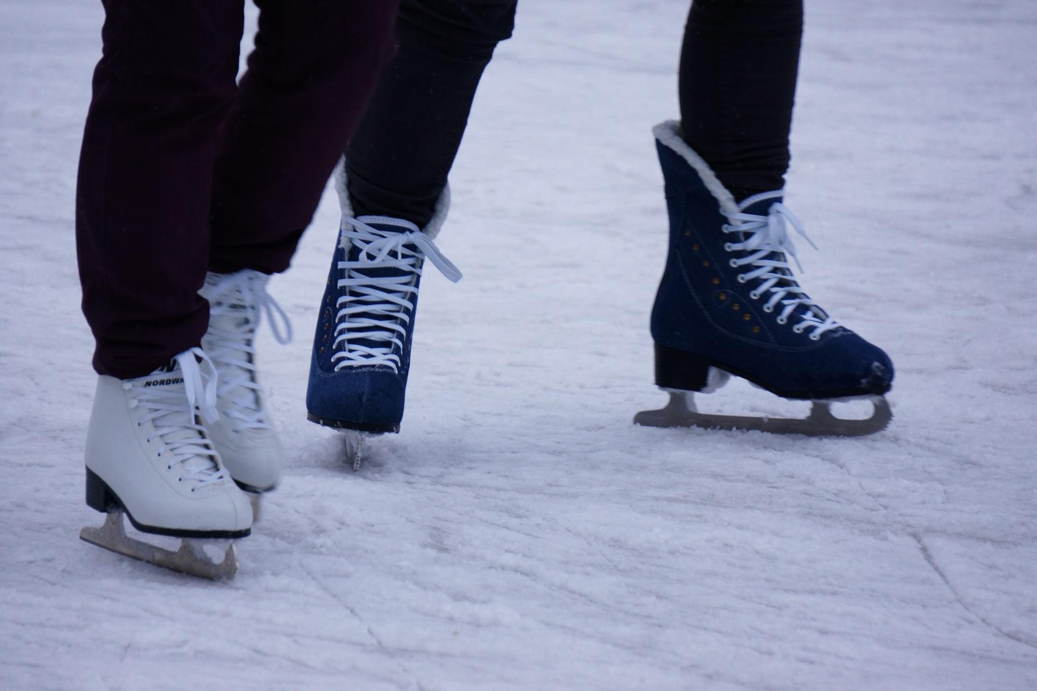 Темой шестого ледового сезона вмосковском парке Горького будет уличное искусство