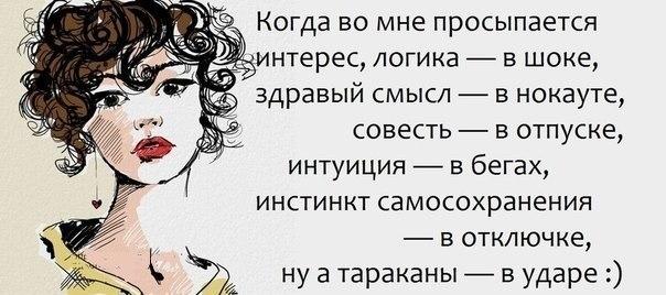 102559066_a9.jpg