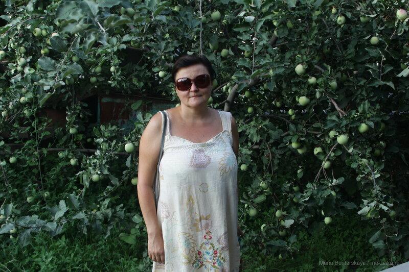 Путевые знаки Владимира Солянова, Саратов, дом Павла Кузнецова, 12 августа 2016 года