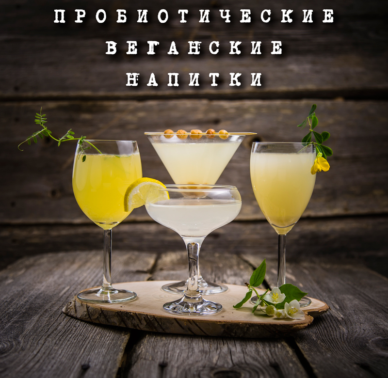 variety-of-probiotic-drinks-anastasiya-zhitenskaya