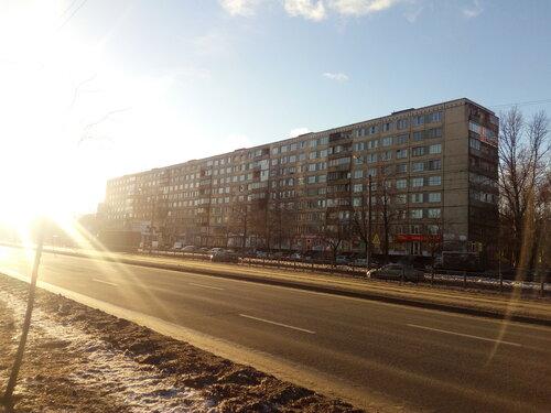 Бухарестская ул. 33к1