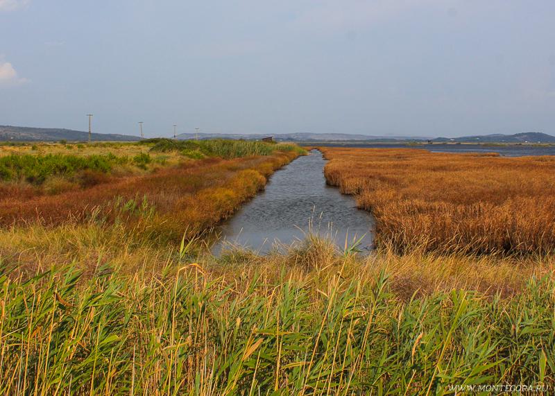 Сначала был построен канал, по которому вода стекала в море