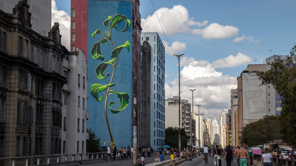 Blooming Plant Murals in the City