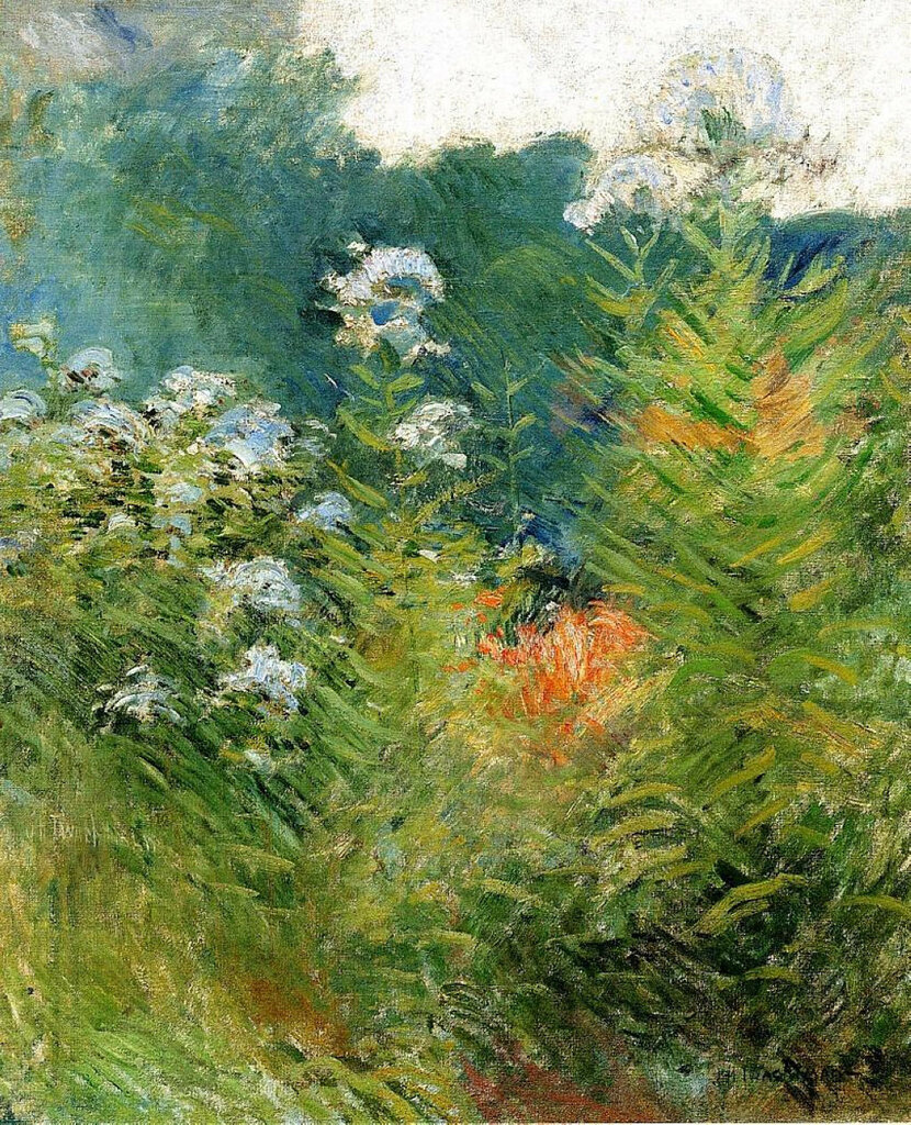 Wildflowers, 1893.jpeg