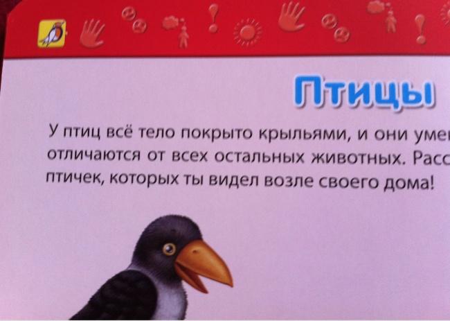 Будущим орнитологам назаметку.