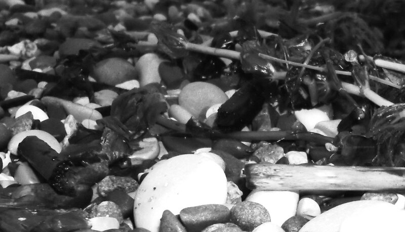 Взгляд на камни береговые ... SAM_0161 - 01.JPG