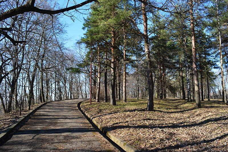 парк в апреле дорожка.jpg