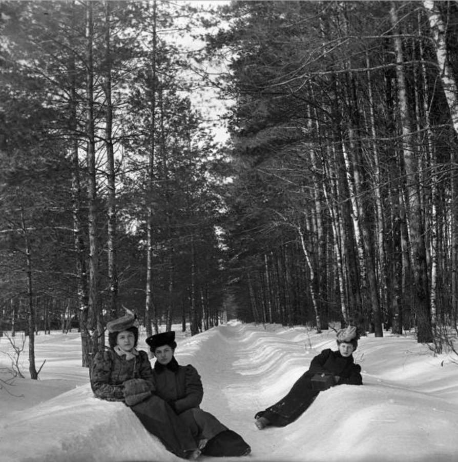 Прогулка в Петровско-Разумовское. «Густя, Тина и Клара на аллее»