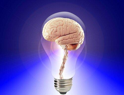 Ученые считают, что сложный характер – признак ума