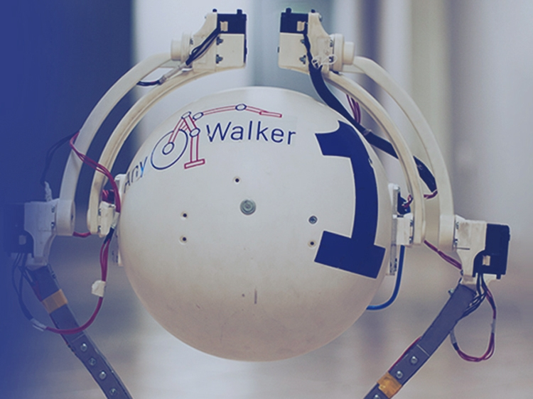 В России разработали робота AnyWalker