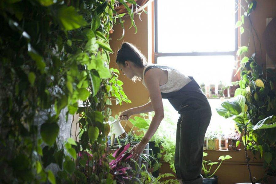 1. «Для меня единственный способ выжить в Нью-Йорке — окружить себя растениями», — говорит Саммер.