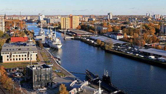 ВКалининграде немалый сом препятствует реконструкции моста иотгоняет водолазов
