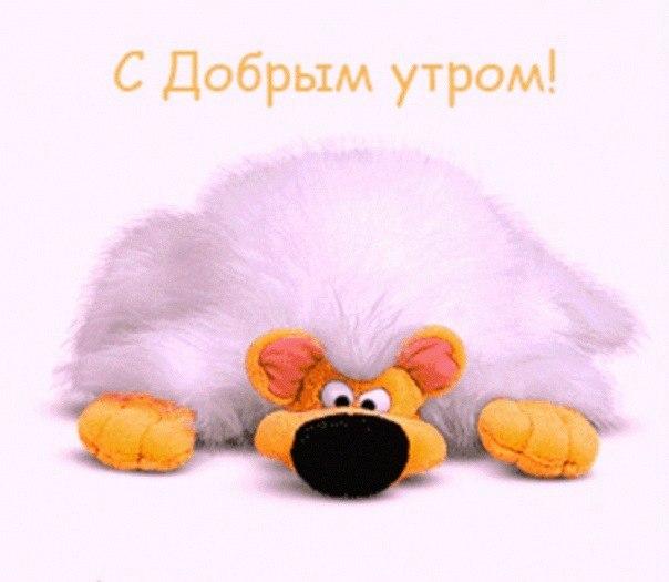 1432202204_kartinki_dobroe_ytro-52.jpg