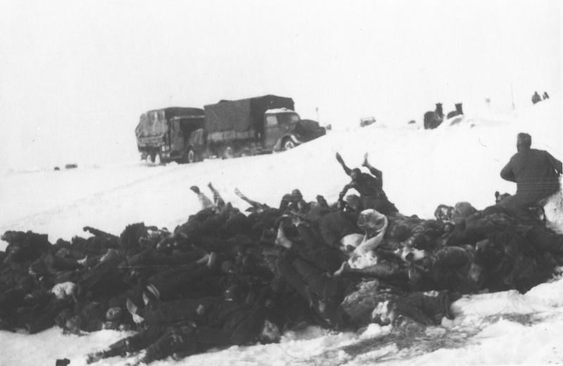Груда тел погибших советских пленных в стороне от дороги.jpg