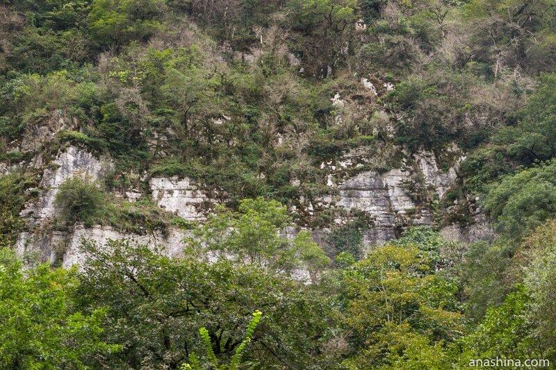 Белые скалы, Ахштырское ущелье, Сочи