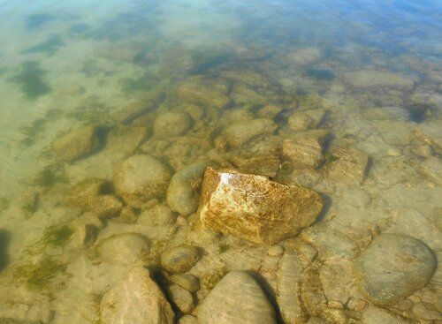 Прозрачность мартовской спокойной воды Азовского моря ... DSCN1265.JPG